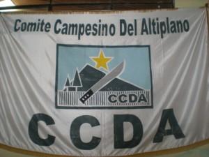 CCDA banner