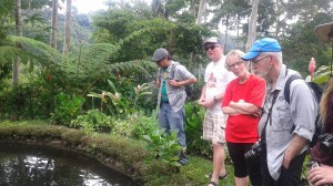The delegation visiting a demonstration site and aquaculture project managed by members of the CCDA.